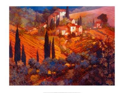 View from San Gimignano by Philip Craig art print